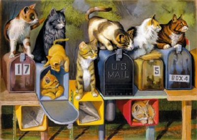 Jigsaw puzzle Cat's got mail (Ravensburger) cover image